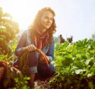 How Gardening Could Improve Your Mental Wellbeing