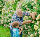 Lancashire Garden Brings 'Natural Planting' To Prominence On TV
