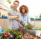 Hot Trend: Rooftop Gardens