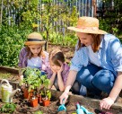 Gardening Jobs For The Summer